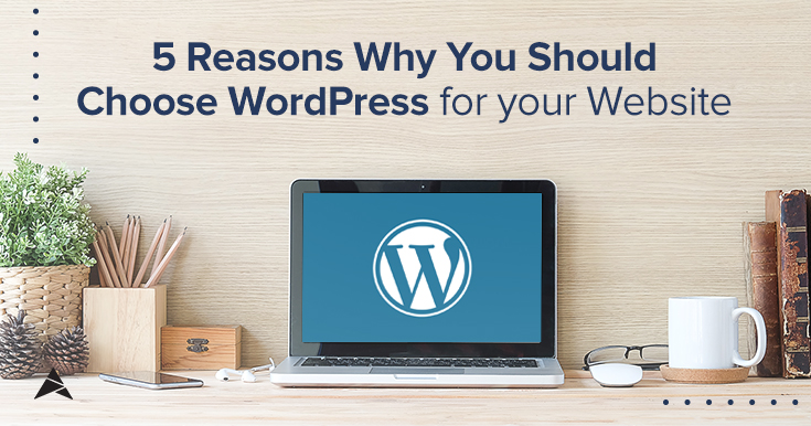 5 Reasons Why You Should Choose WordPress for Your Website