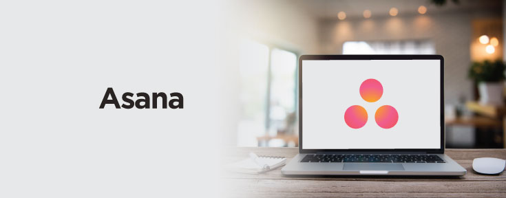 Asana is a good web design project management software