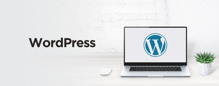 WordPress is a good web development software